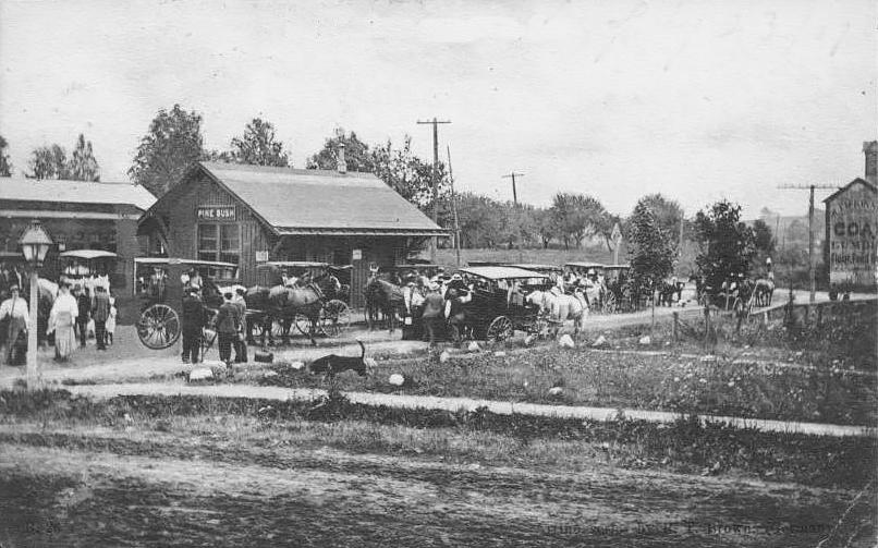 Railroad Station, Pine Bush NY, Ulster County c1908