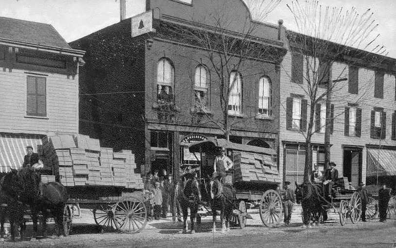 Shipping Violets In Rhinebeck NY, Dutchess County c1910